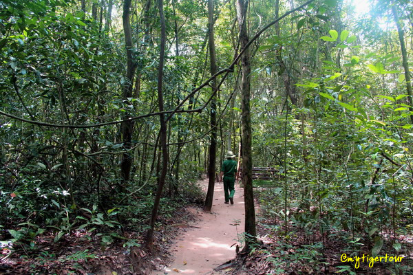 Short walk through Cu Chi forest