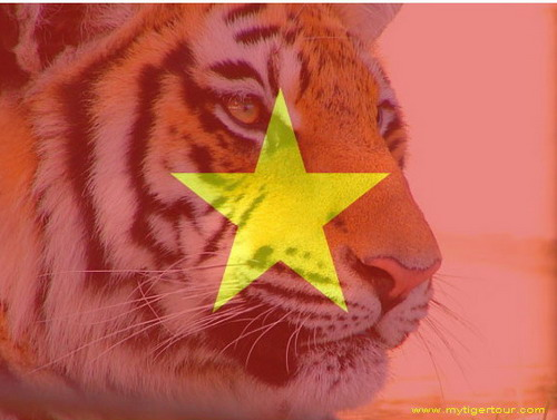 VIETNAM: THE RISING ECONOMIC TIGER